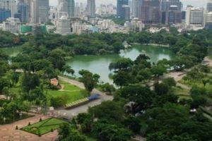 Nạn 'mây mưa' nơi công cộng gây nhức nhối ở Bangkok