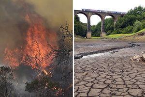 Tình trạng thời tiết nắng nóng bất thường trên Trái đất sẽ kéo dài đến năm 2022