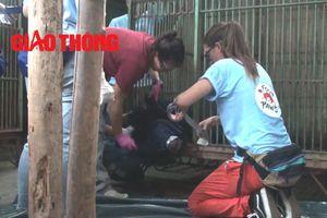 Cận cảnh giải cứu 2 chú gấu ngựa 'khủng' ở Thái Nguyên