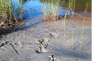 Gia Lai:Chủ tịch UBND xã 'tố' nhà máy chì, kẽm xả thải ra môi trường