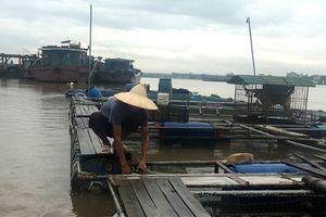 Hải Dương: Hàng loạt các biện pháp phòng chống ảnh hưởng của bão số 4