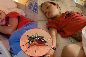 Bé trai 6 tuổi bị co giật, viêm não chỉ vì một vết muỗi cắn