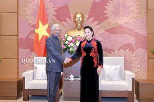 Một số hình ảnh Chủ tịch Quốc hội tiếp điều phối viên thường trú Liên Hợp quốc và trưởng đại diện unicef tại Việt Nam