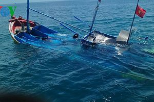 Tàu Hải Dương 19 đâm chìm tàu cá của ngư dân Bình Thuận