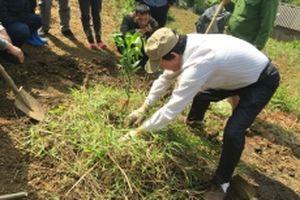 Chậm triển khai dự án 'Hỗ trợ kinh doanh cho nông hộ'