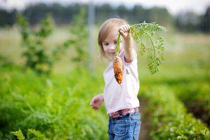 Ăn trái cây, rau củ giúp ngăn ngừa ung thư
