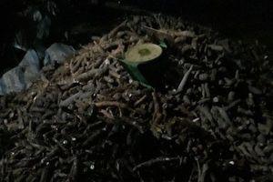 Thông tin mới về nghi án cán bộ xã xô người dân thiệt mạng ở Tây Ninh