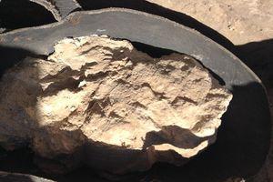 Hãi hùng loại vi khuẩn cực độc tồn tại bên trong ngôi mộ cổ 3.200 năm