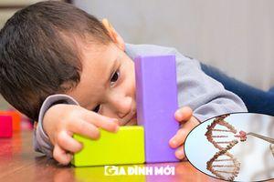 Các nhà khoa học phát hiện gen bị khiếm khuyết gây chứng tự kỷ