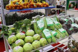 Giải pháp nào để tăng giá trị nông sản xuất khẩu vào thị trường châu Âu và Nhật Bản?