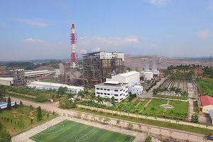 Tổng công ty Điện lực TKV đạt lợi nhuận 6 tháng trên 463 tỷ đồng