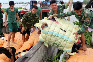 Thu giữ gần 30 tấn hàng hóa nhập lậu