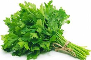 Cho con bú ăn rau mùi tây được không?