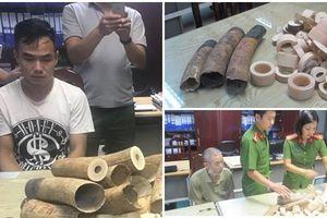 Hai đối tượng tàng trữ gần 200kg ngà voi có bị xử lý hình sự?