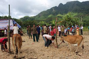 Thừa Thiên Huế: Hiệu quả của chính sách dân tộc tại vùng miền núi và dân tộc thiểu số
