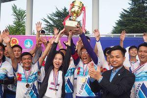 800 du học sinh Việt Nam tại Hàn Quốc tham gia SFVSAK11