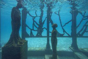 Chiêm ngưỡng phòng trưng bày nghệ thuật 'thủy triều' đầu tiên trên thế giới
