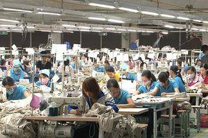 Quảng Ninh: Sẽ xử lý hình sự doanh nghiệp trốn đóng BHXH