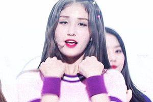 'Búp bê sống' 10X chấm dứt hợp đồng độc quyền với JYP Entertainment