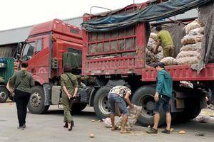 'Lật mặt' nông sản Trung Quốc nhái hàng Đà Lạt