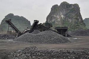 Quảng Ninh: Chỉ đạo xử lý sai phạm trong quản lý đất đai, xây dựng tại Cụm cảng Km6