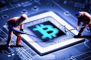 Giá Bitcoin hôm nay 20/8: Đầu tuần sụt giảm, nhà đầu tư tháo chạy