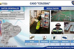 Ecuador thu giữ 1,1 tấn cocaine giấu trong thùng đựng chuối xuất khẩu