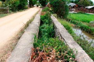 Vùng sản xuất Ma Zăng Hạ ở Ninh Thuận thiếu nước tưới