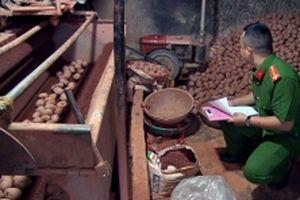 Trộn đất đỏ để mạo danh khoai tây Đà Lạt