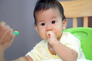 Gợi ý một số món ngon, bổ dưỡng cho trẻ 1 tuổi biếng ăn