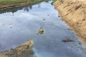 Hồ tôm xả thải ra biển, dân khẩn thiết cầu cứu