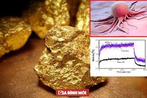 Nghiên cứu mới của Việt Nam: Ứng dụng hạt nano vàng vào điều trị ung thư