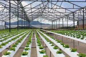 Hiến kế ứng dụng công nghệ 4.0 phát triển nền nông nghiệp thông minh bền vững