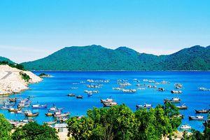 Thăm vịnh Vũng Rô