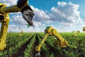 Việt kiều Mỹ tiết lộ sự thật kinh ngạc về nông nghiệp thông minh