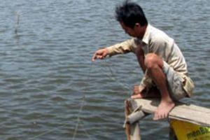 'Bơm' nguồn vốn khủng 1,75 triệu USD phát triển thủy sản ĐBSCL