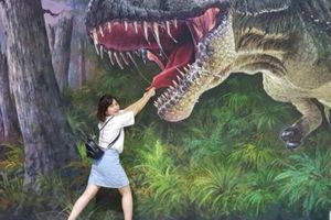 Muôn góc sống ảo thu hút giới trẻ ở bảo tàng tranh 3D Đà Nẵng