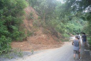 Sớm khắc phục những điểm sạt lở trên đồi Thiên Văn