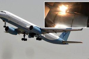 Clip: Kinh hoàng máy bay cháy động cơ giữa không trung
