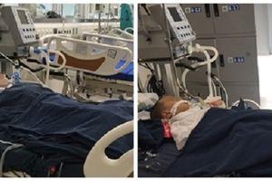 Ba bệnh nhi nhập viện trong tình trạng nguy kịch vì bị ong vỡ tổ đốt
