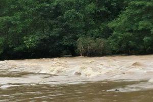 Tiếp tục tìm kiếm người nghi bị cuốn trôi trên sông Cầu