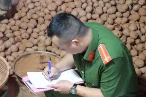 Bắt quả tang nhiều cơ sở trộn đất vào khoai tây Trung Quốc để làm giả khoai tây Đà Lạt
