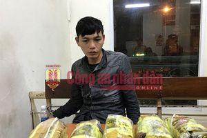 Mang 10kg ma túy xuống xe khách trước cổng công an phường thì bị bắt