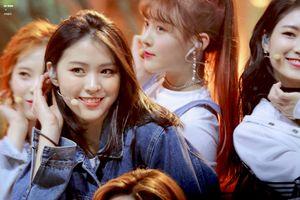 Mỹ nhân 10X được JYP ưu ái sau khi Somi rời công ty