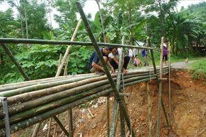 Nghệ An: Chênh vênh cầu tre qua suối sau lũ