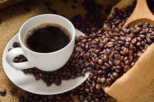 Giá cà phê hôm nay 23/8: Thị trường trầm lắng