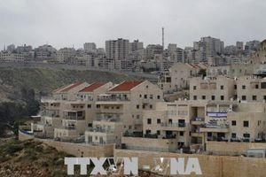 Palestine chỉ trích Tổng thống Trump muốn loại Jerusalem khỏi hòa đàm