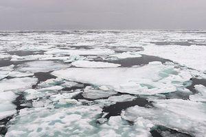 Vùng băng lâu đời nhất ở Bắc Cực bắt đầu tan, các chuyên gia lo ngại về 'trận chiến' thiên tai