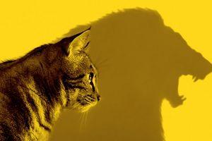 5 bí quyết để được người khác nể trọng