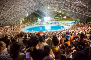 Quảng Ninh: Vé vào miễn phí, 'Đảo ngọc Tuần Châu' chật ních người